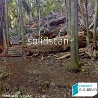Solidscan
